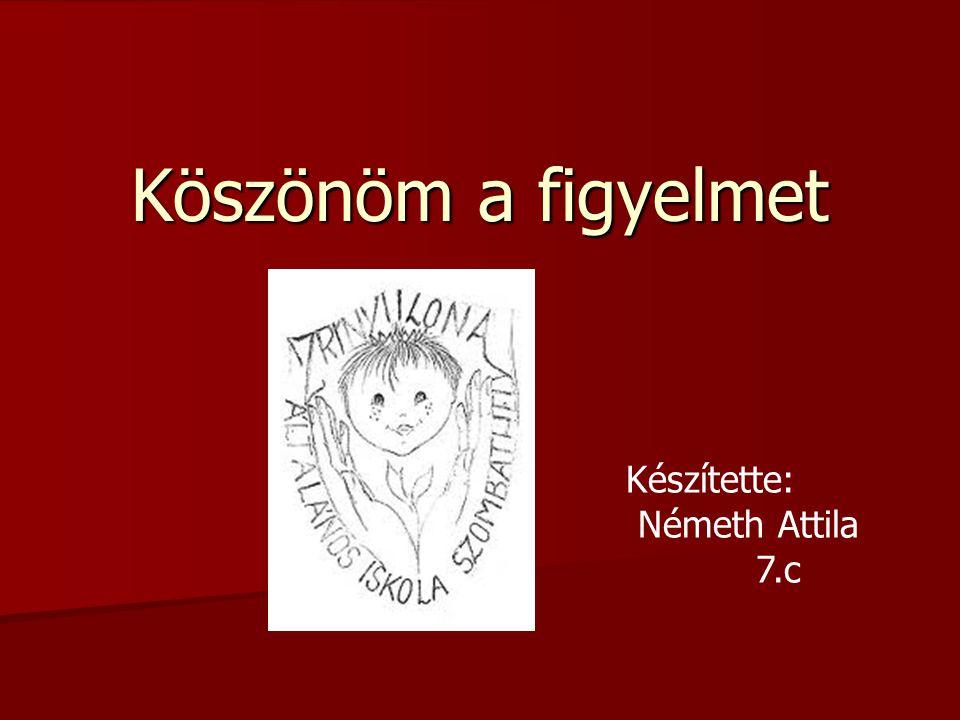 Köszönöm a figyelmet Készítette: Németh Attila 7.c