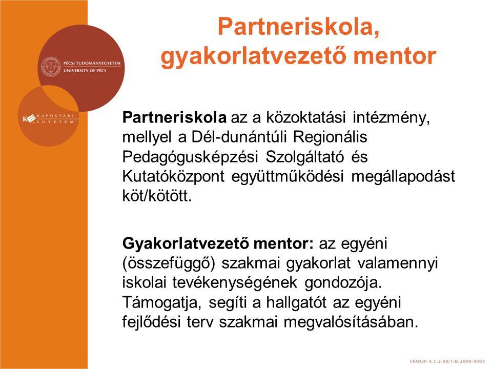 Partneriskola, gyakorlatvezető mentor