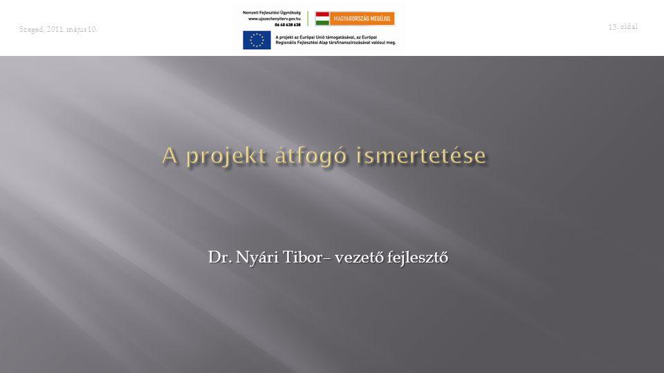 A projekt átfogó ismertetése