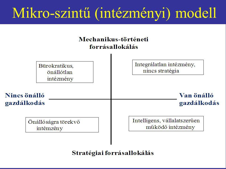 Mikro-szintű (intézményi) modell