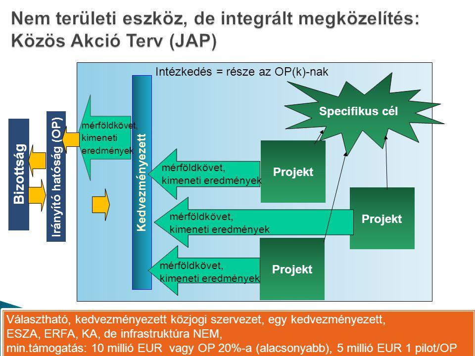 Nem területi eszköz, de integrált megközelítés: Közös Akció Terv (JAP)