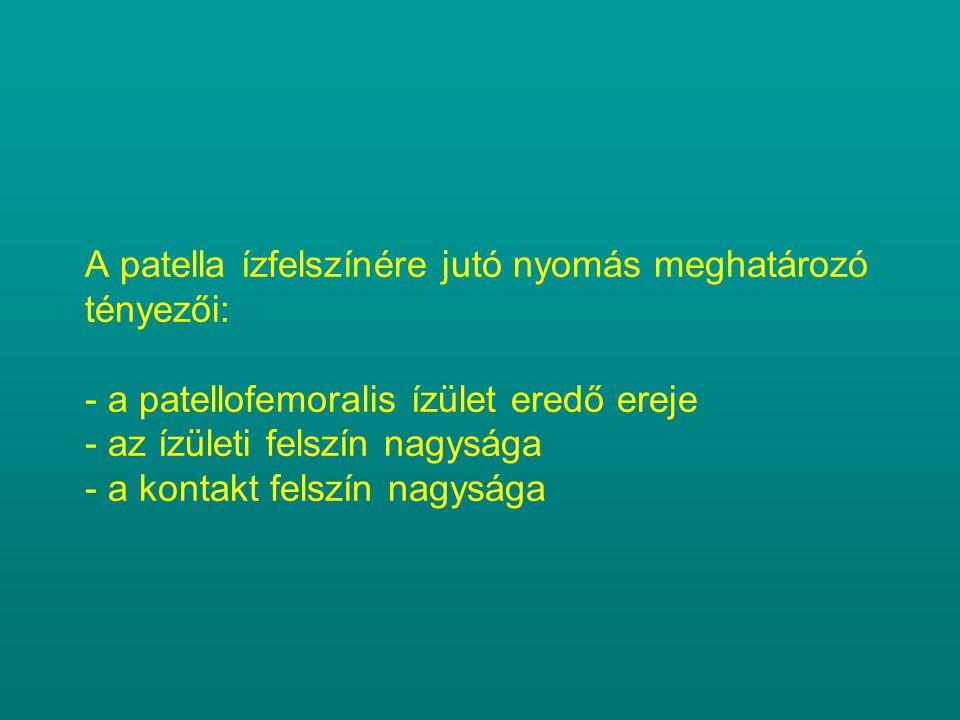 A patella ízfelszínére jutó nyomás meghatározó tényezői: - a patellofemoralis ízület eredő ereje - az ízületi felszín nagysága - a kontakt felszín nagysága