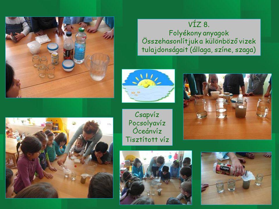 VÍZ 8. Folyékony anyagok. Összehasonlítjuk a különböző vizek tulajdonságait (állaga, színe, szaga)