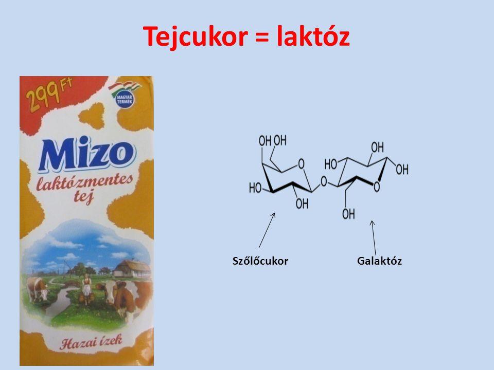 Tejcukor = laktóz Szőlőcukor Galaktóz