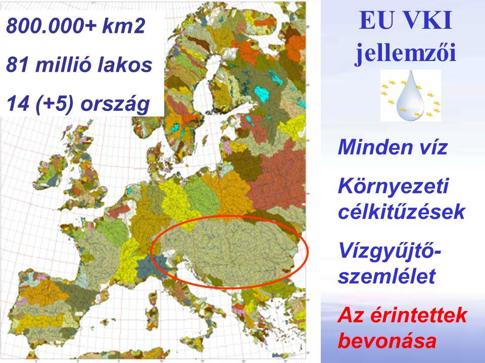 EU VKI jellemzői 800.000+ km2 81 millió lakos 14 (+5) ország
