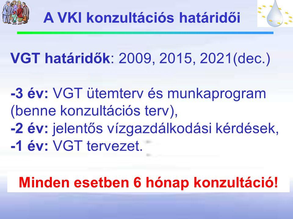 A VKI konzultációs határidői Minden esetben 6 hónap konzultáció!