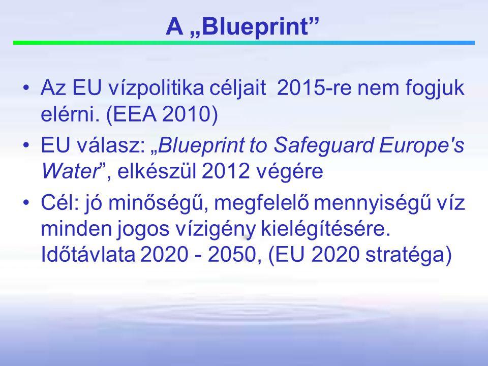 """A """"Blueprint Az EU vízpolitika céljait 2015-re nem fogjuk elérni. (EEA 2010)"""