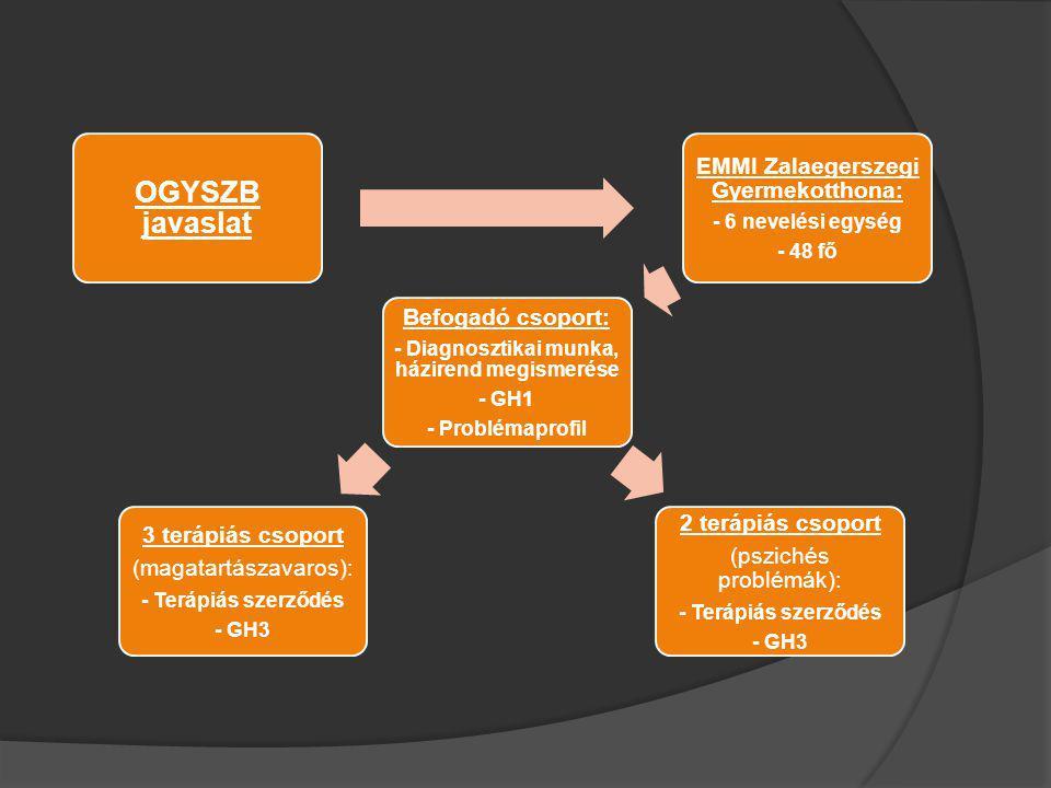 OGYSZB javaslat EMMI Zalaegerszegi Gyermekotthona: Befogadó csoport: