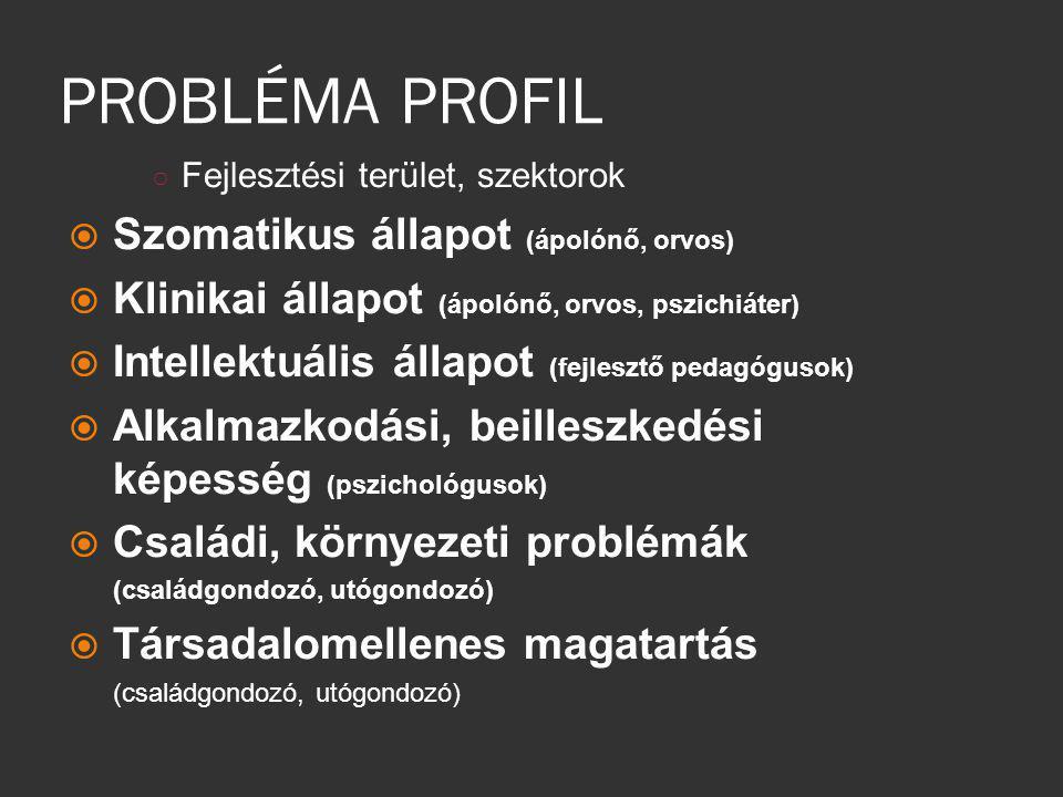 PROBLÉMA PROFIL Szomatikus állapot (ápolónő, orvos)