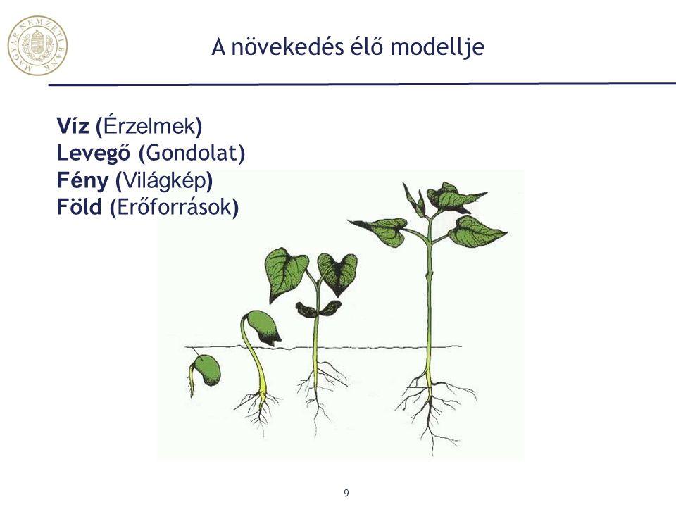 A növekedés élő modellje