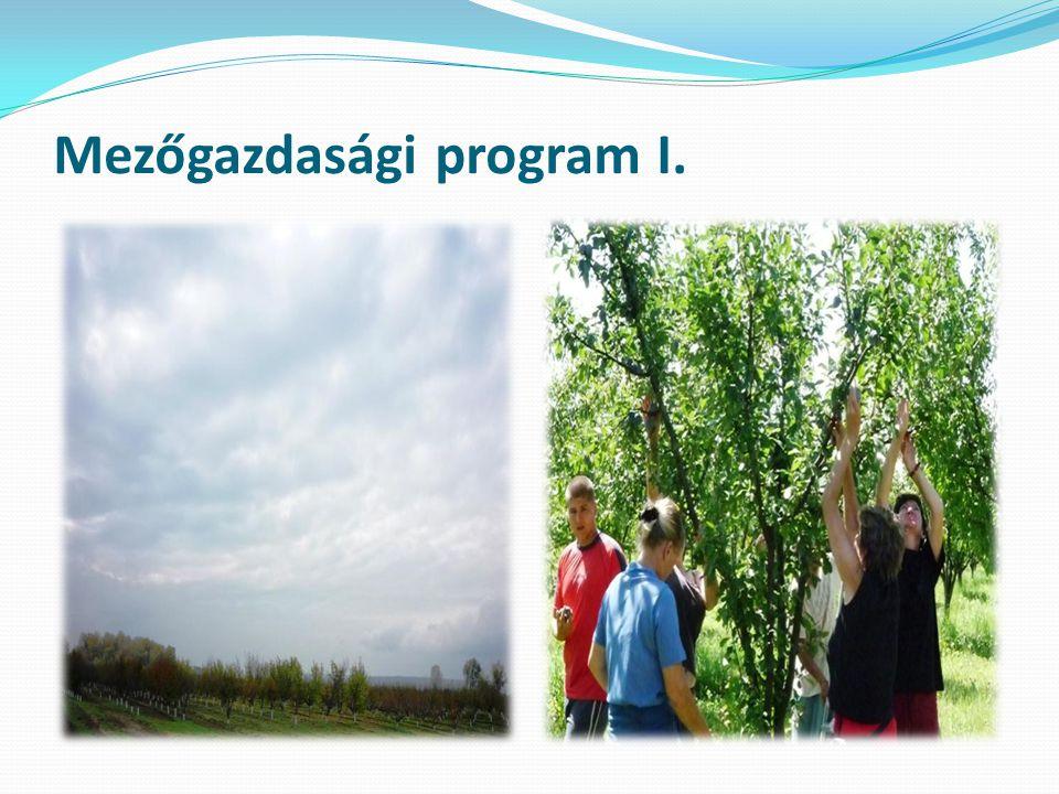 Mezőgazdasági program I.