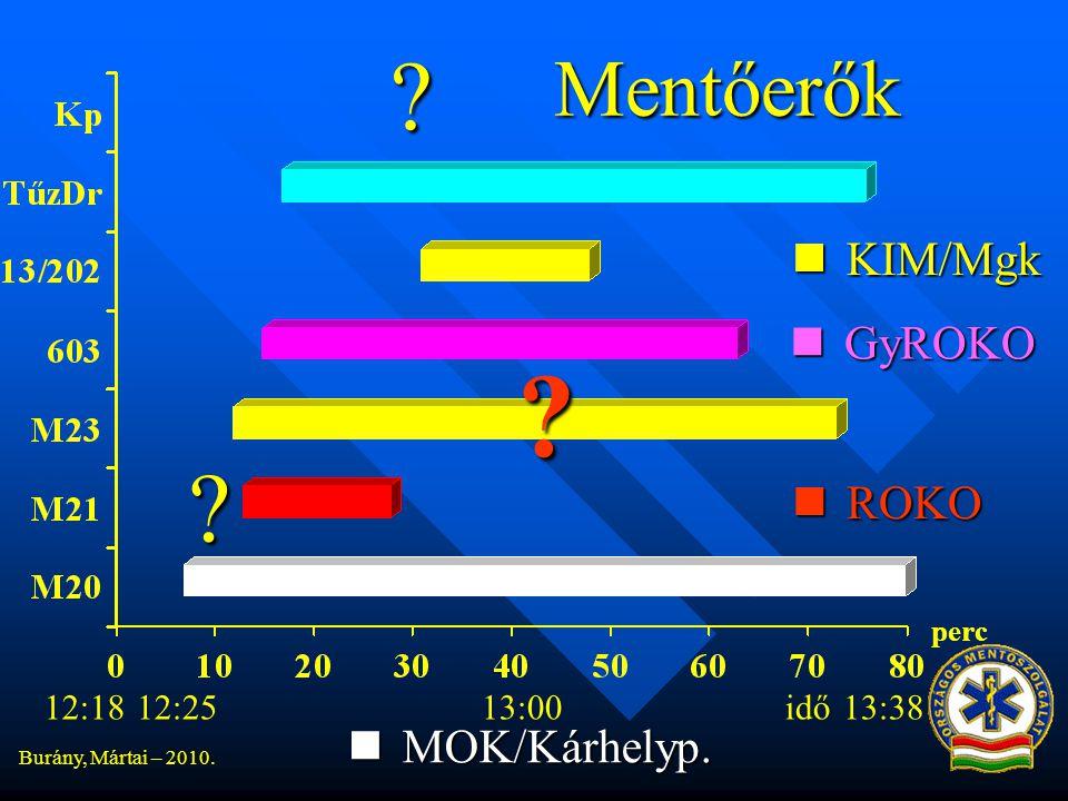 Mentőerők KIM/Mgk GyROKO ROKO MOK/Kárhelyp. 12:18 12:25 13:00