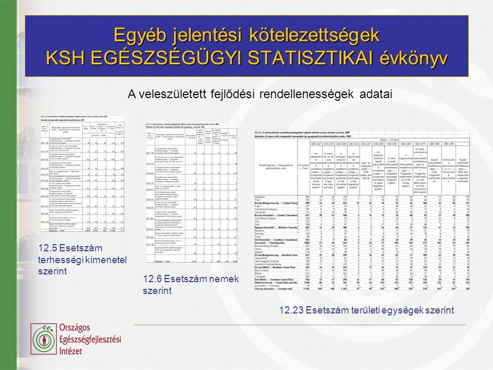 Egyéb jelentési kötelezettségek KSH EGÉSZSÉGÜGYI STATISZTIKAI évkönyv