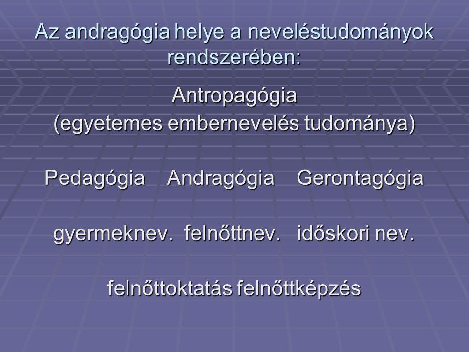 Az andragógia helye a neveléstudományok rendszerében: