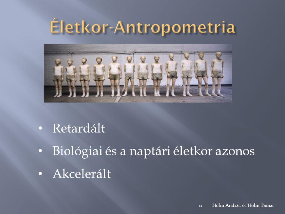 Életkor-Antropometria