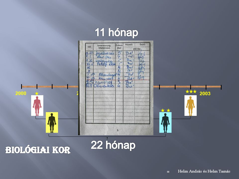 11 hónap 2 hónap 30 hónap 22 hónap Biológiai kor 2000 2001 2002 2003