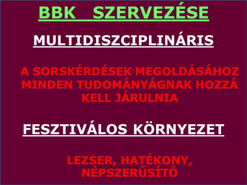 BBK SZERVEZÉSE MULTIDISZCIPLINÁRIS FESZTIVÁLOS KÖRNYEZET