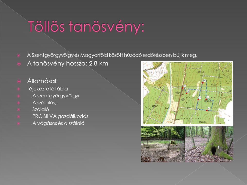 Töllös tanösvény: A tanösvény hossza: 2,8 km Állomásai: