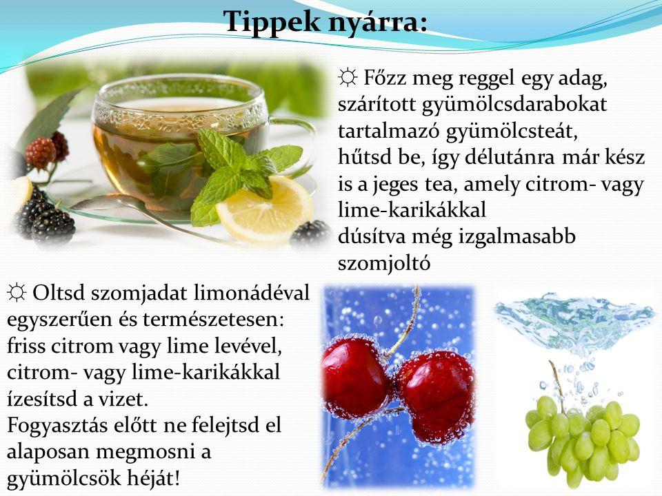 Tippek nyárra: ☼ Főzz meg reggel egy adag, szárított gyümölcsdarabokat tartalmazó gyümölcsteát,