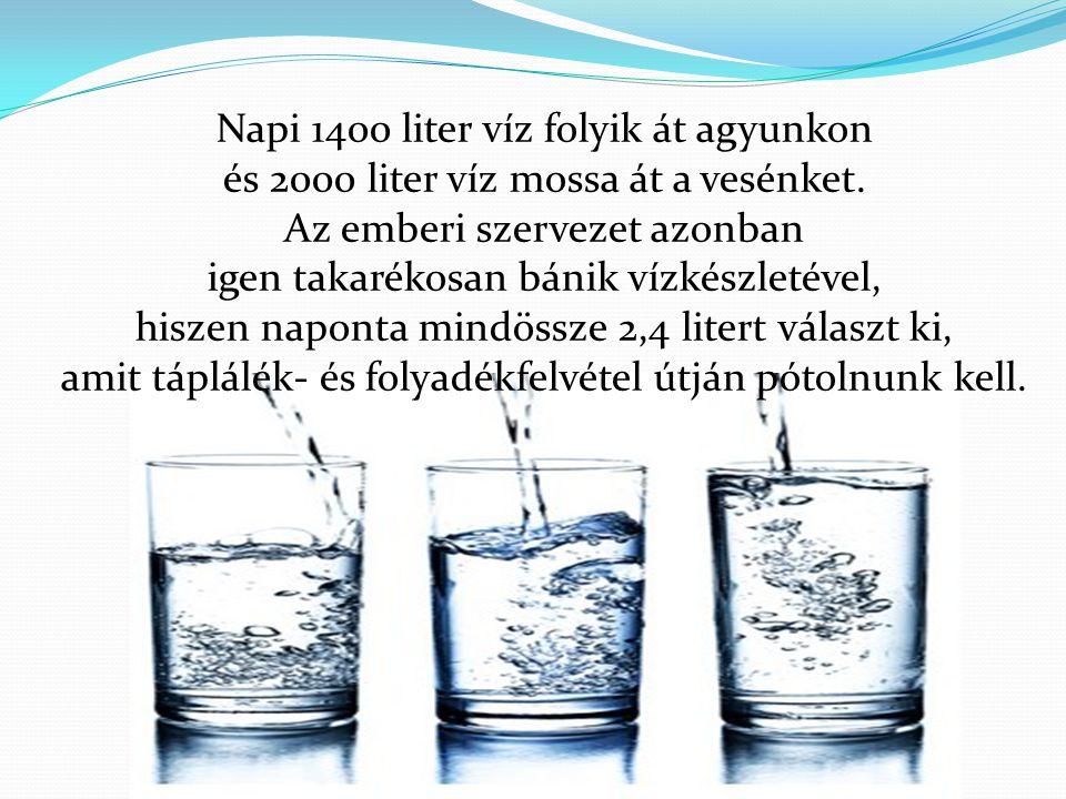 Napi 1400 liter víz folyik át agyunkon