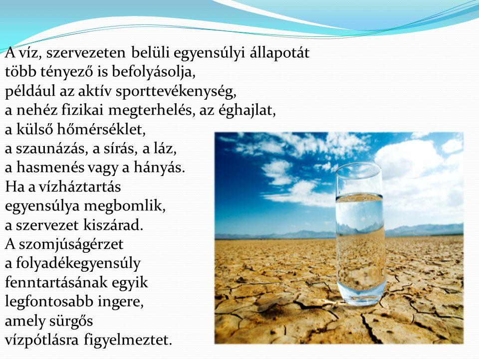 A víz, szervezeten belüli egyensúlyi állapotát