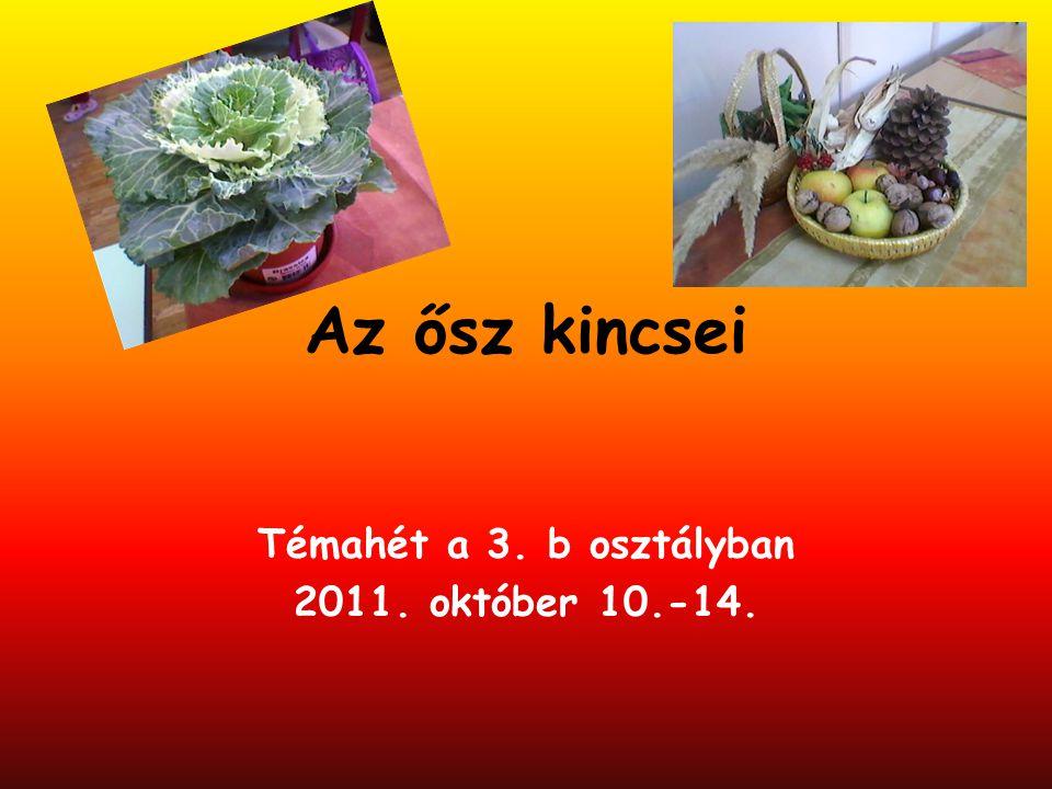 Témahét a 3. b osztályban 2011. október 10.-14.