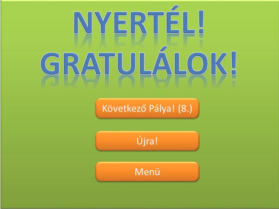Nyertél! Gratulálok! Következő Pálya! (8.) Újra! Menü
