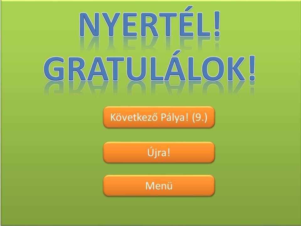 Nyertél! Gratulálok! Következő Pálya! (9.) Újra! Menü