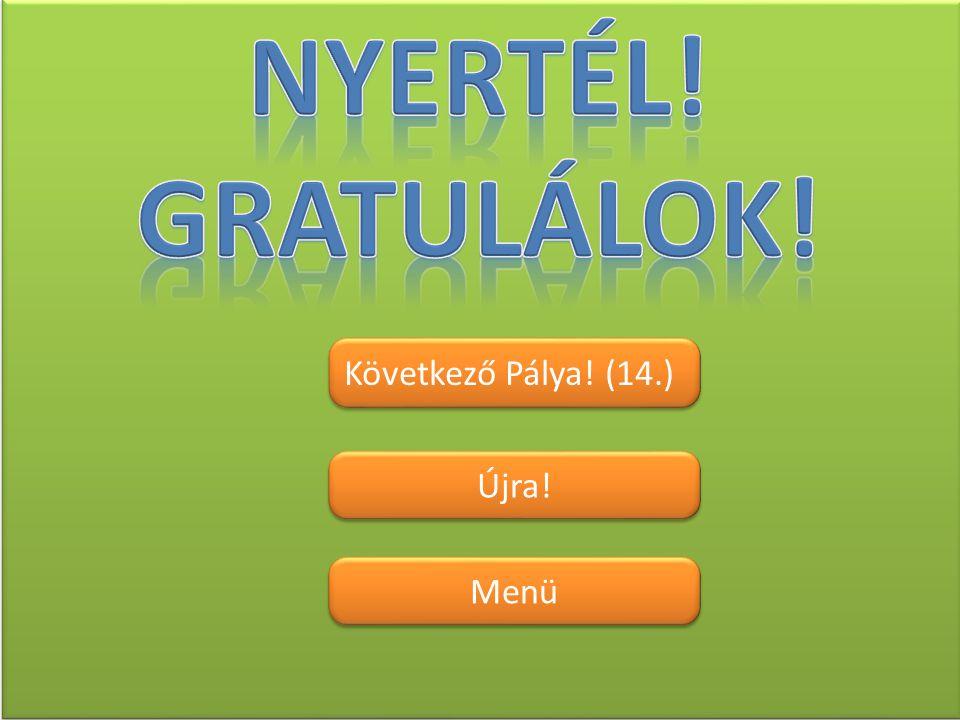 Nyertél! Gratulálok! Következő Pálya! (14.) Újra! Menü