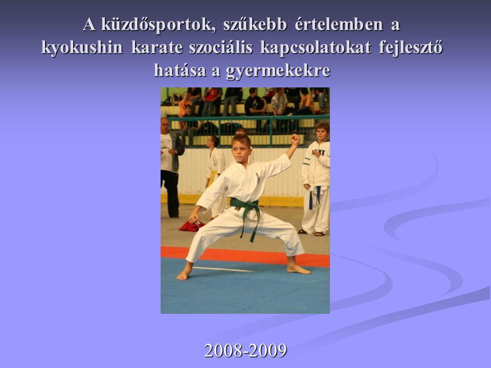 A küzdősportok, szűkebb értelemben a kyokushin karate szociális kapcsolatokat fejlesztő hatása a gyermekekre