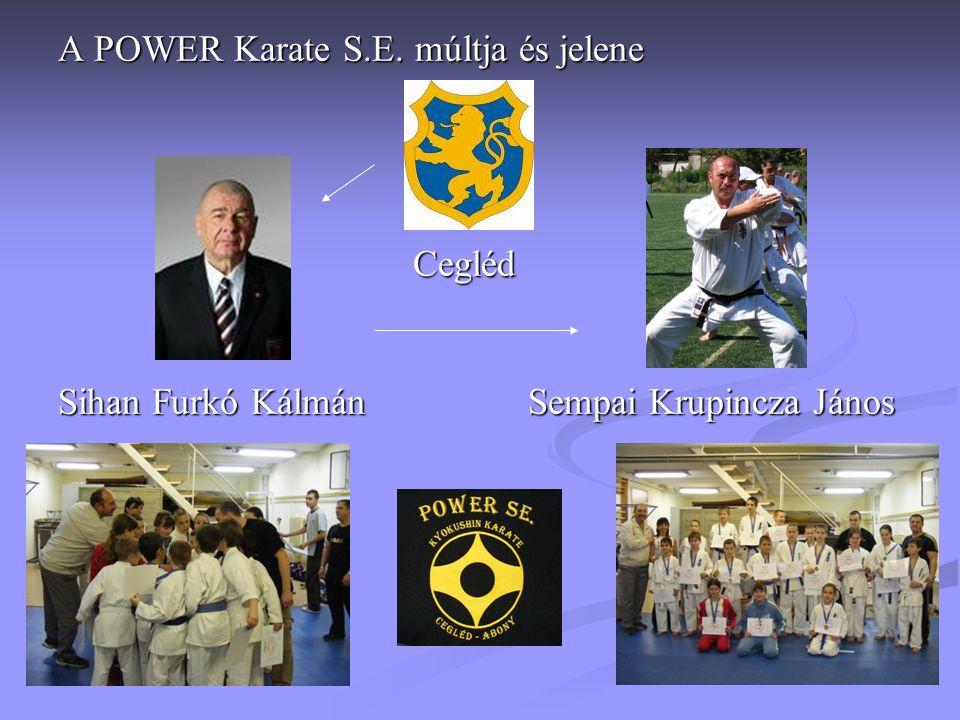 A POWER Karate S.E. múltja és jelene
