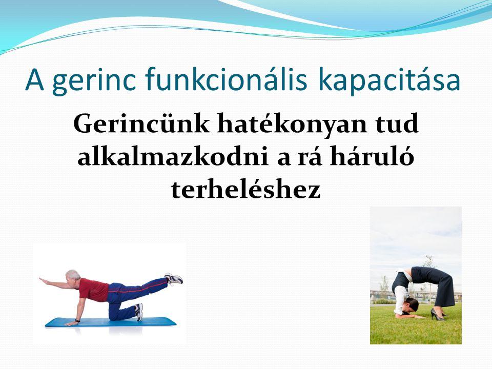 A gerinc funkcionális kapacitása