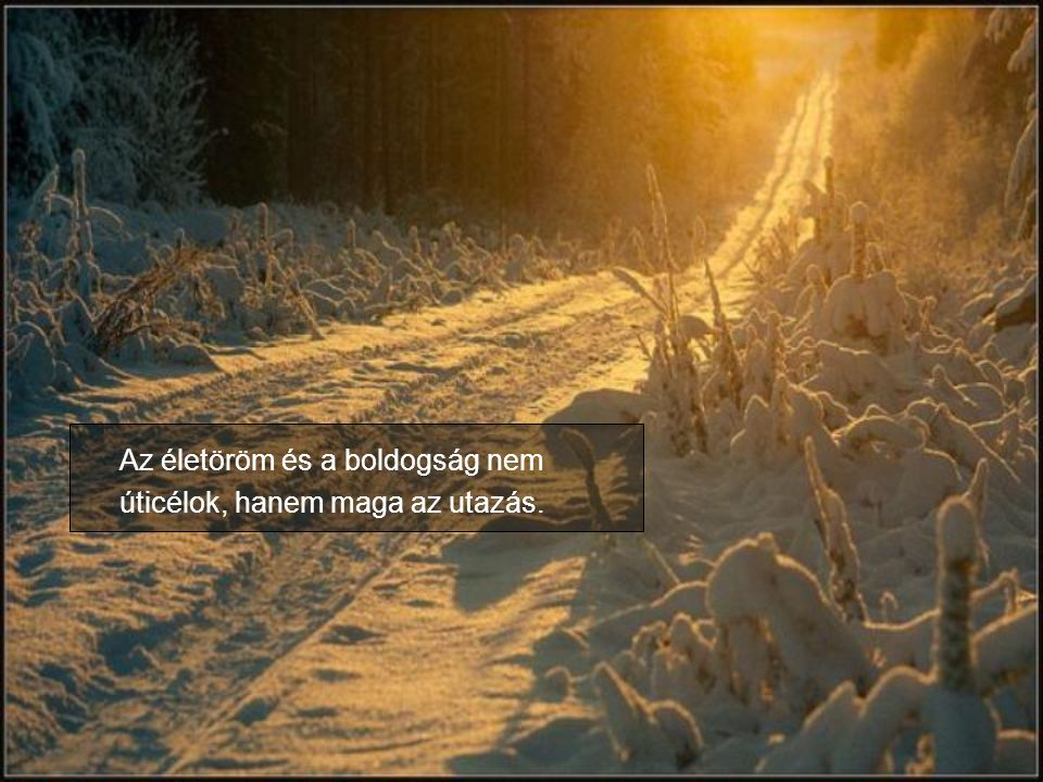 Az életöröm és a boldogság nem úticélok, hanem maga az utazás.