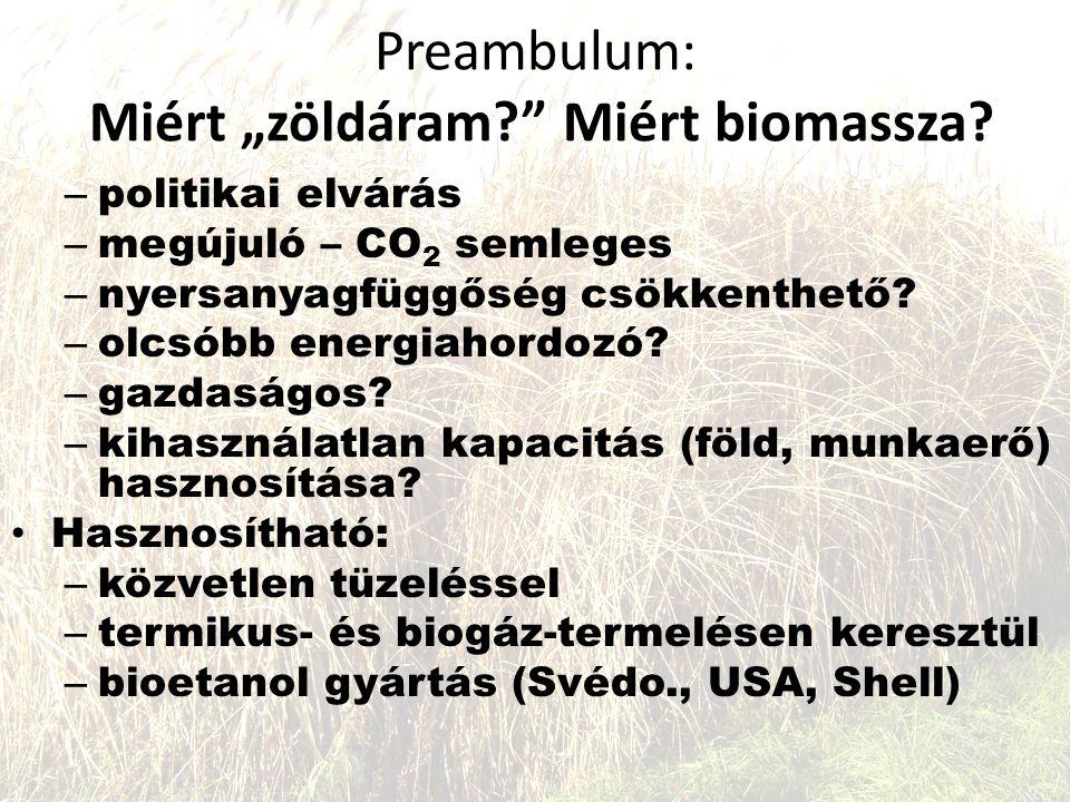 """Preambulum: Miért """"zöldáram Miért biomassza"""