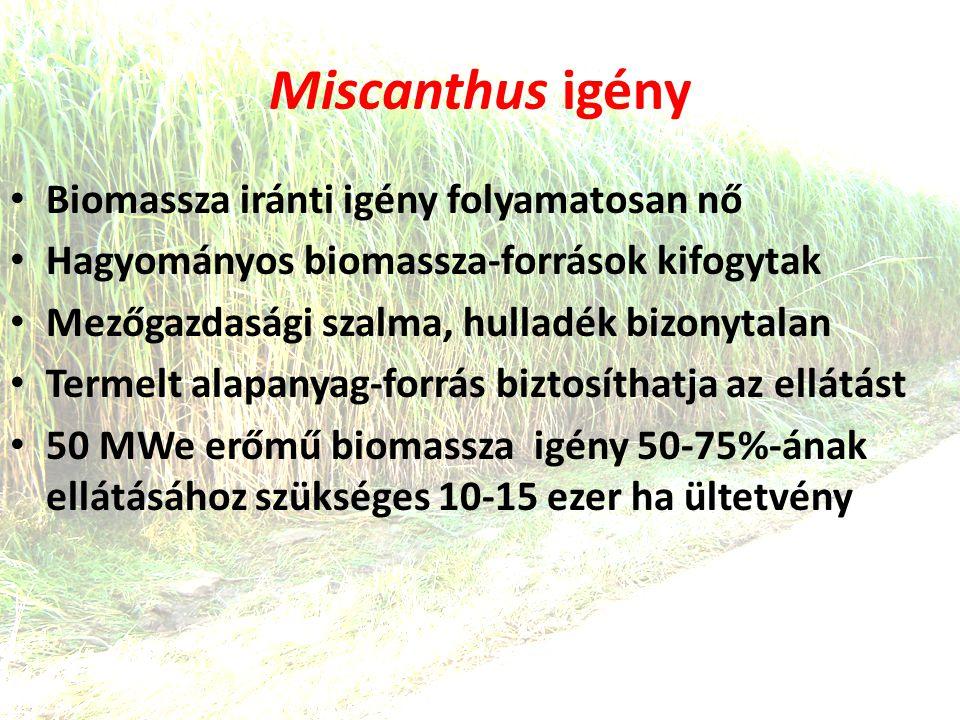 Miscanthus igény Biomassza iránti igény folyamatosan nő