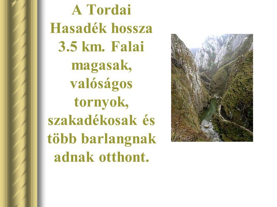 A Tordai Hasadék hossza 3. 5 km