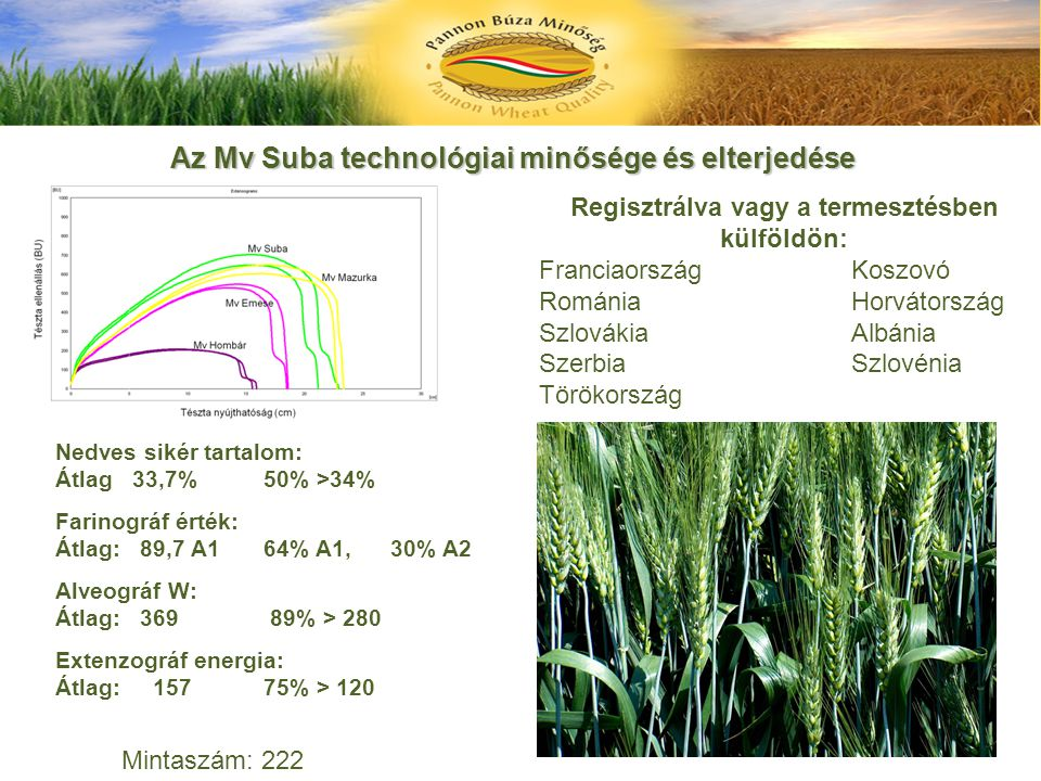 Az Mv Suba technológiai minősége és elterjedése