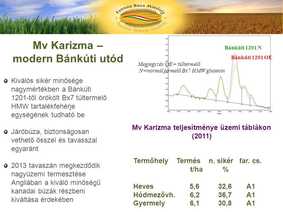 Mv Karizma teljesítménye üzemi táblákon (2011)