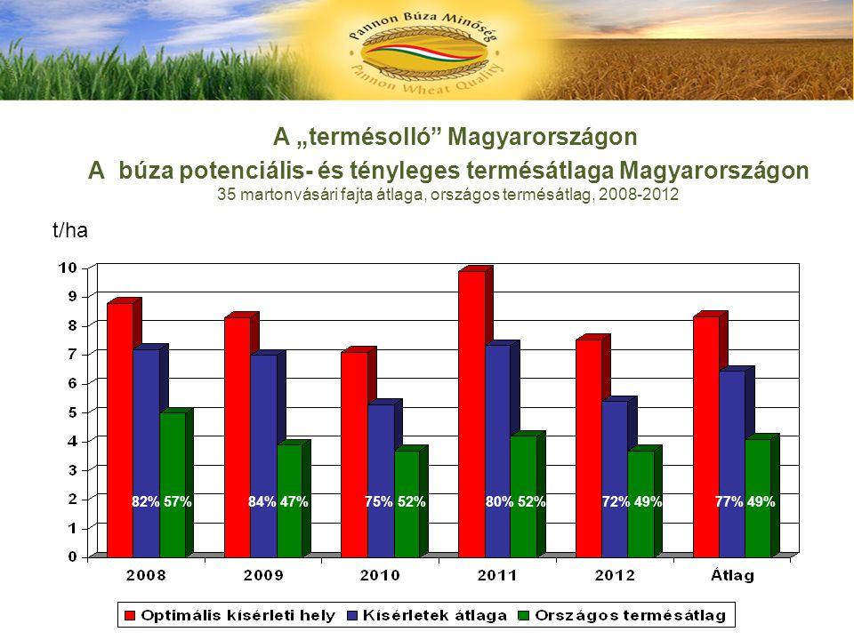 """A """"termésolló Magyarországon A búza potenciális- és tényleges termésátlaga Magyarországon 35 martonvásári fajta átlaga, országos termésátlag, 2008-2012"""