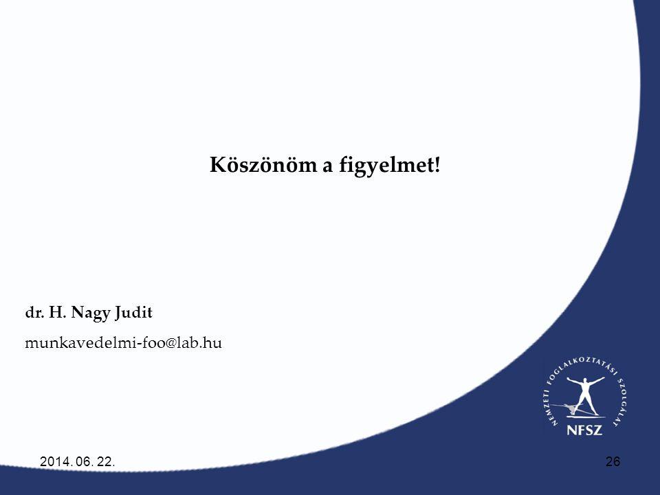 Köszönöm a figyelmet! dr. H. Nagy Judit munkavedelmi-foo@lab.hu
