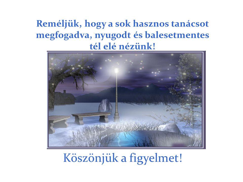 Reméljük, hogy a sok hasznos tanácsot megfogadva, nyugodt és balesetmentes tél elé nézünk!