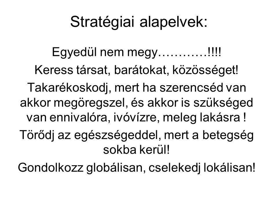 Stratégiai alapelvek: