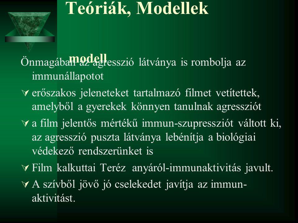 Teóriák, Modellek modell