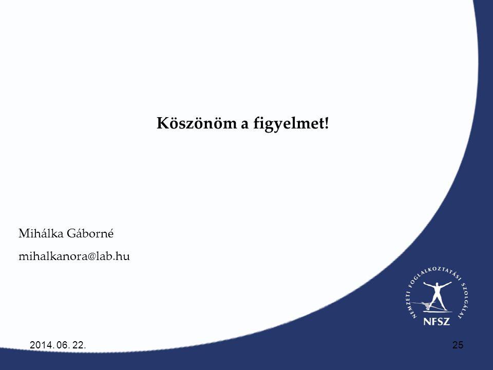 Köszönöm a figyelmet! Mihálka Gáborné mihalkanora@lab.hu 2017.04.02.
