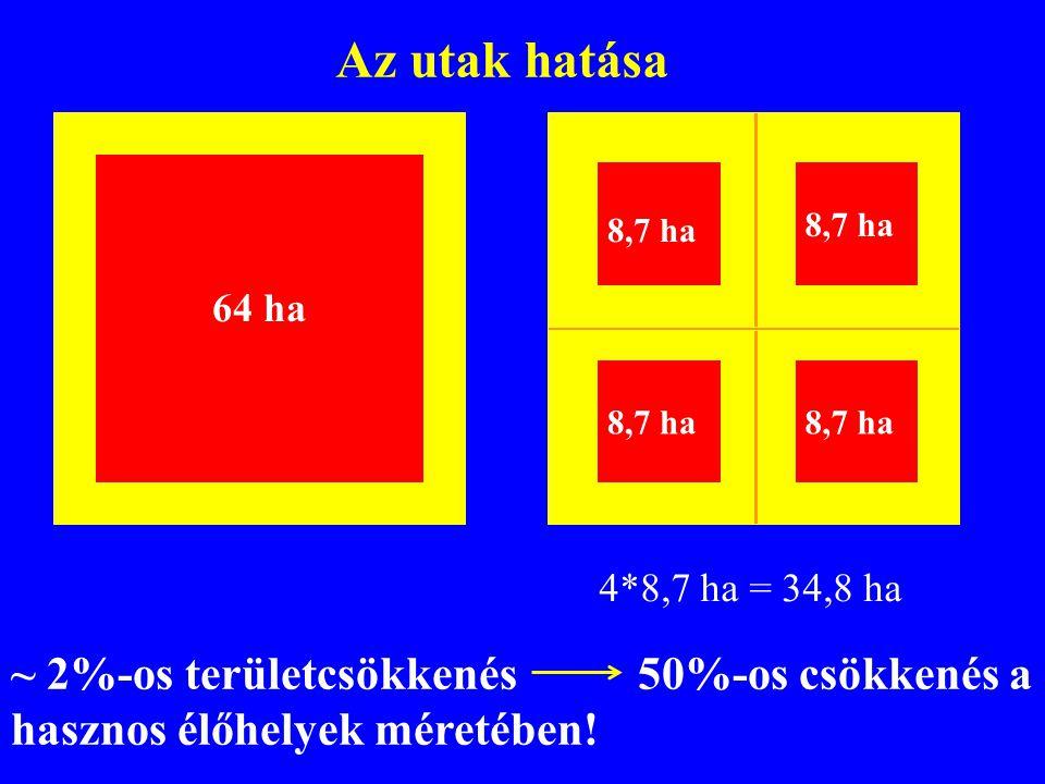 Az utak hatása 8,7 ha. 8,7 ha. 64 ha. 8,7 ha. 8,7 ha. 4*8,7 ha = 34,8 ha.