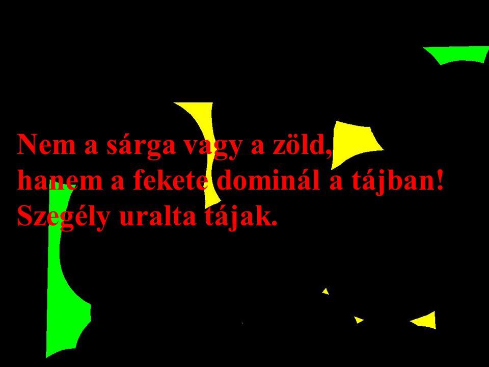Nem a sárga vagy a zöld, hanem a fekete dominál a tájban! Szegély uralta tájak.