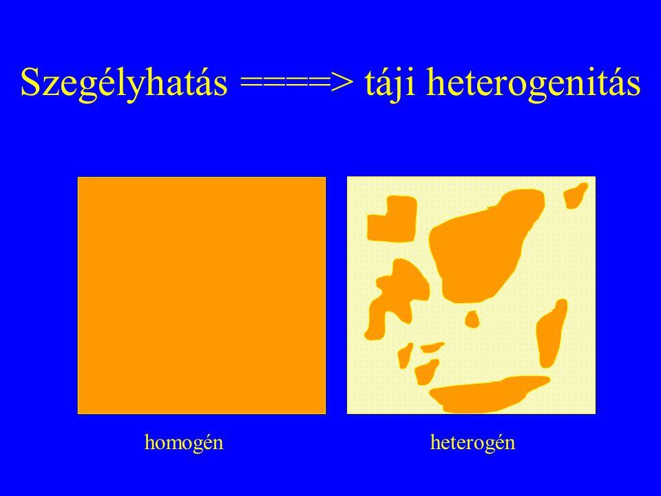 Szegélyhatás ====> táji heterogenitás
