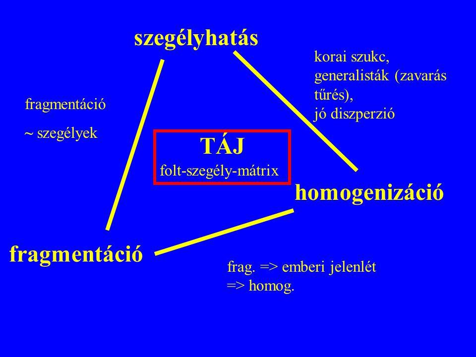 szegélyhatás TÁJ homogenizáció fragmentáció