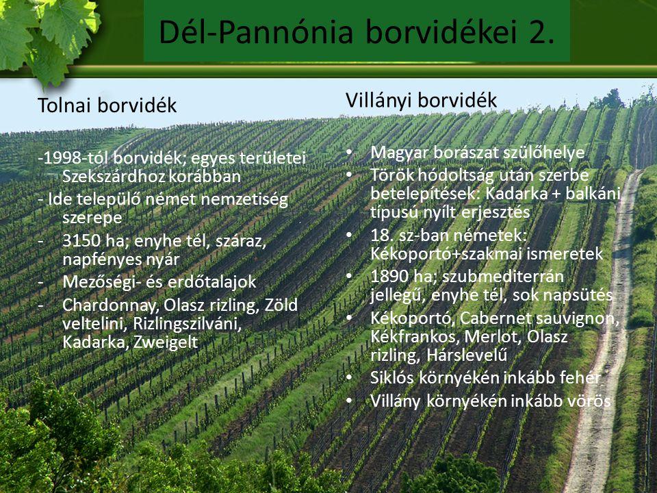 Dél-Pannónia borvidékei 2.