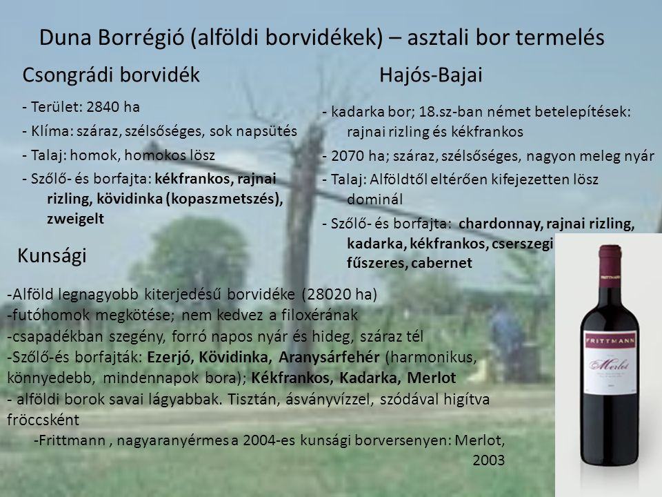 Duna Borrégió (alföldi borvidékek) – asztali bor termelés